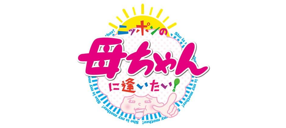 f:id:mikawakougei:20170130030332j:plain