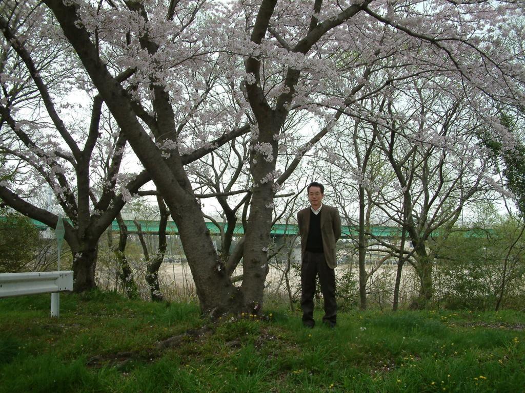 f:id:mikawakougei:20170411042534j:plain