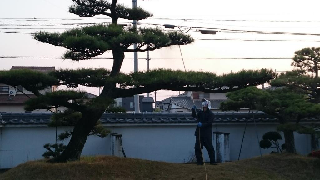 f:id:mikawakougei:20170415043132j:plain
