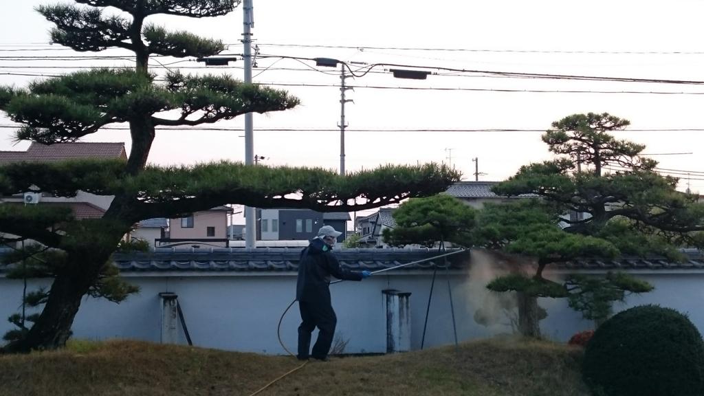 f:id:mikawakougei:20170415043320j:plain