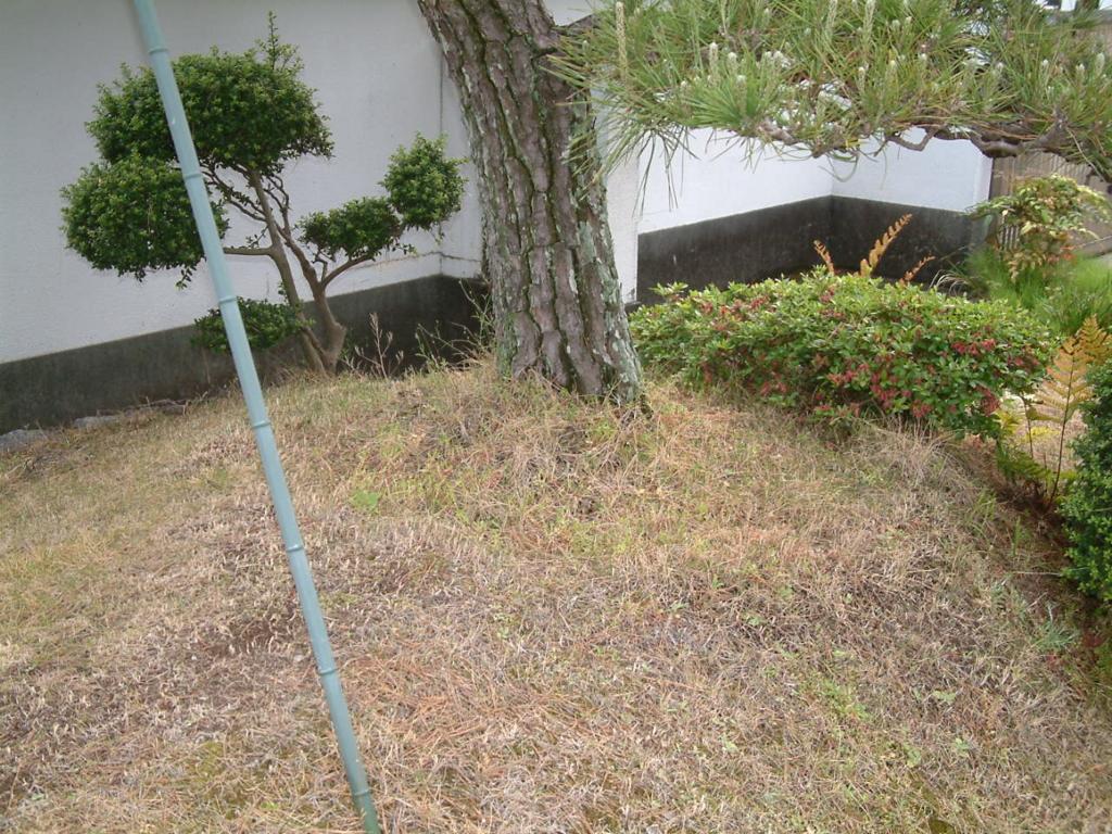 f:id:mikawakougei:20170511033157j:plain