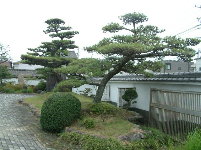 f:id:mikawakougei:20170518014141j:plain