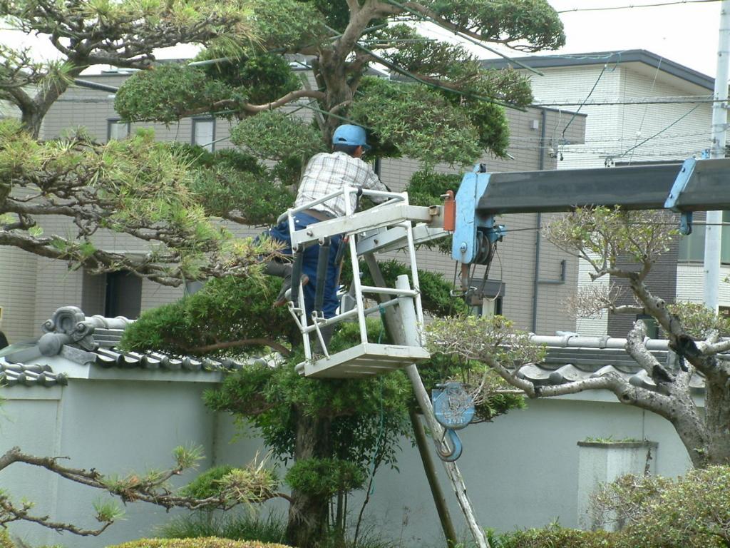 f:id:mikawakougei:20170627031205j:plain