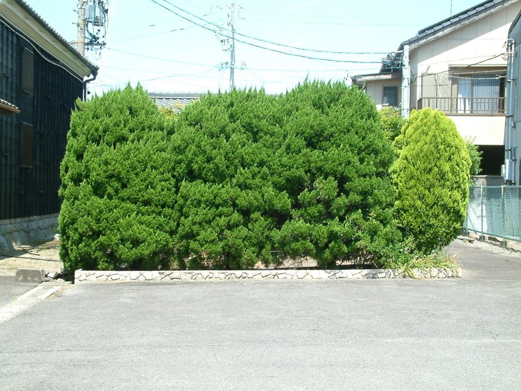 f:id:mikawakougei:20180606041106j:plain
