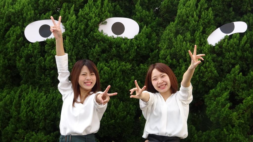 f:id:mikawakougei:20190126034845j:plain