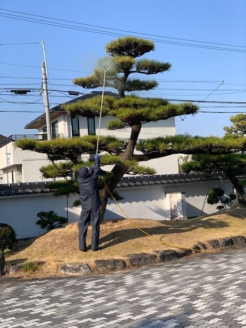 f:id:mikawakougei:20190316041011j:plain