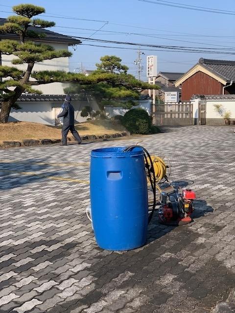 f:id:mikawakougei:20190316041355j:plain