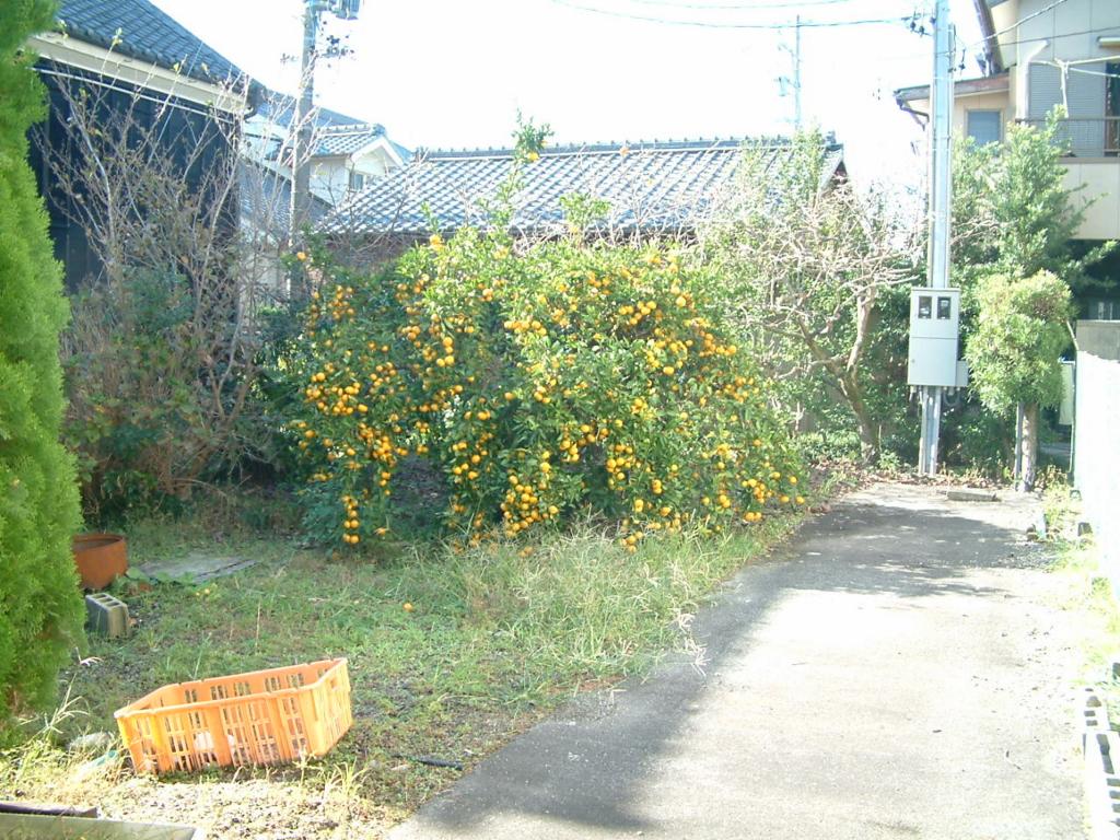 f:id:mikawakougei:20190424041648j:plain