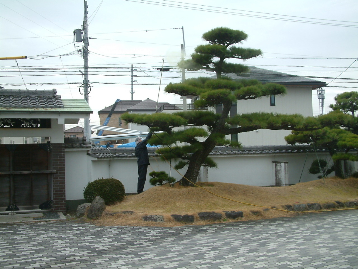 f:id:mikawakougei:20200226031516j:plain