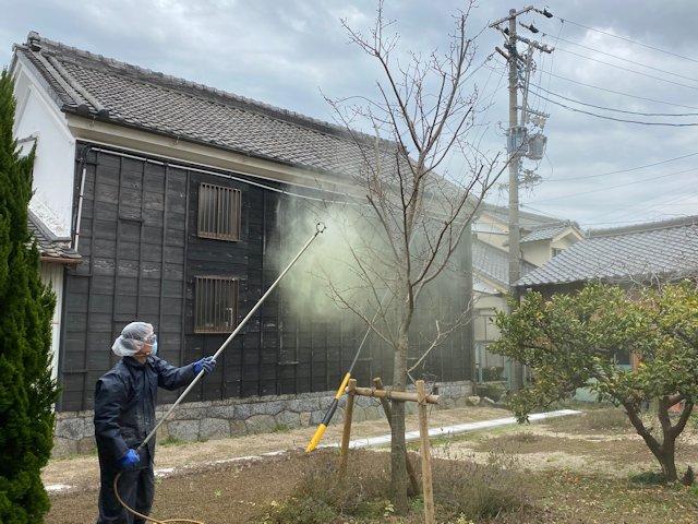 f:id:mikawakougei:20200226032350j:plain