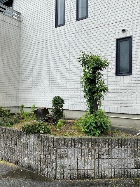 f:id:mikawakougei:20200613013644j:plain