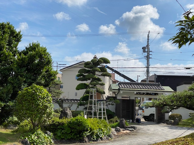 f:id:mikawakougei:20200625021010j:plain