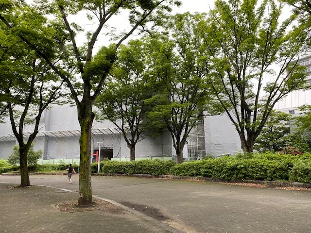 f:id:mikawakougei:20200708002308j:plain