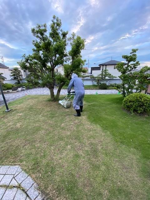 f:id:mikawakougei:20200723014954j:plain