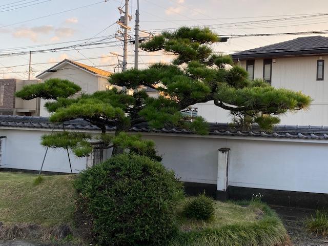f:id:mikawakougei:20201007021949j:plain