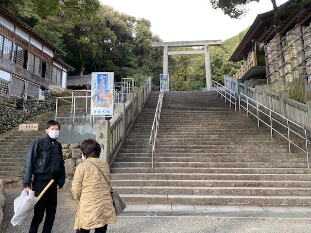 f:id:mikawakougei:20201201022240j:plain