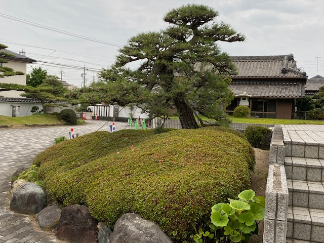 f:id:mikawakougei:20210627015538j:plain