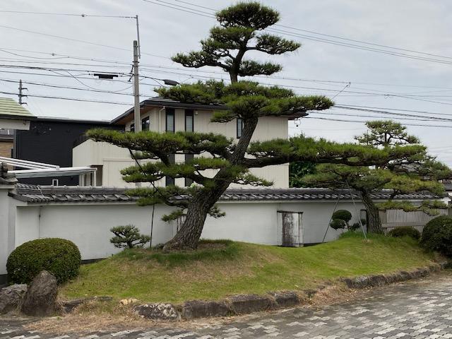 f:id:mikawakougei:20210627020119j:plain