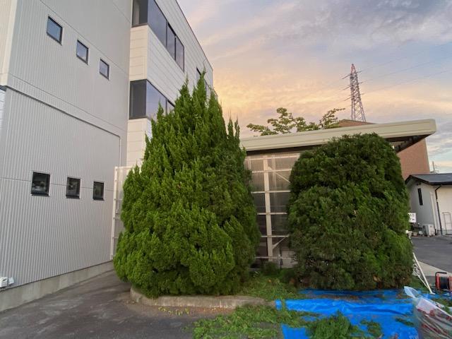 f:id:mikawakougei:20210720020540j:plain
