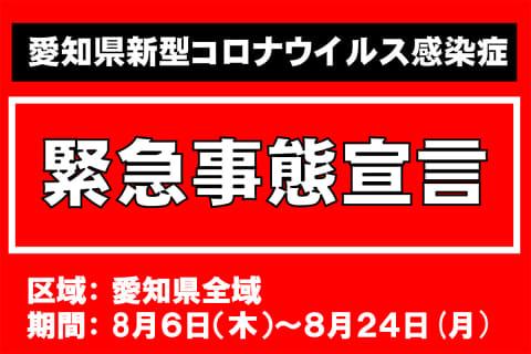 f:id:mikawakougei:20210820014659j:plain