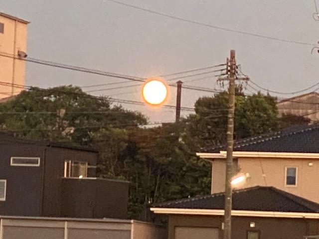 f:id:mikawakougei:20210921025438j:plain