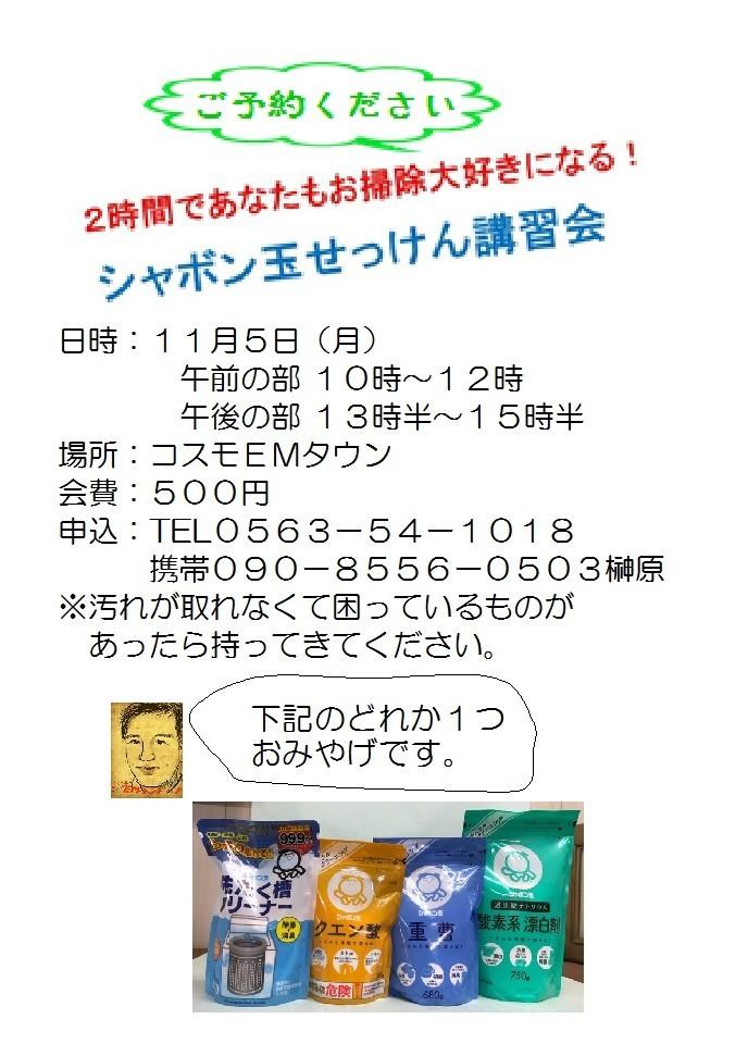 f:id:mikawawan:20181029214806j:plain