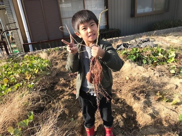 f:id:mikawawan:20181123224657j:plain