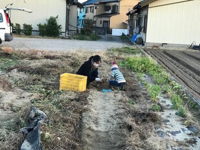 f:id:mikawawan:20181129174805j:plain