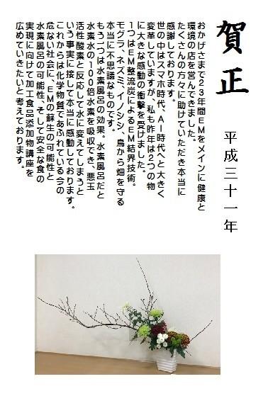 f:id:mikawawan:20190101224415j:plain