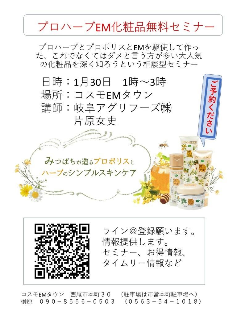 f:id:mikawawan:20190109001731j:plain