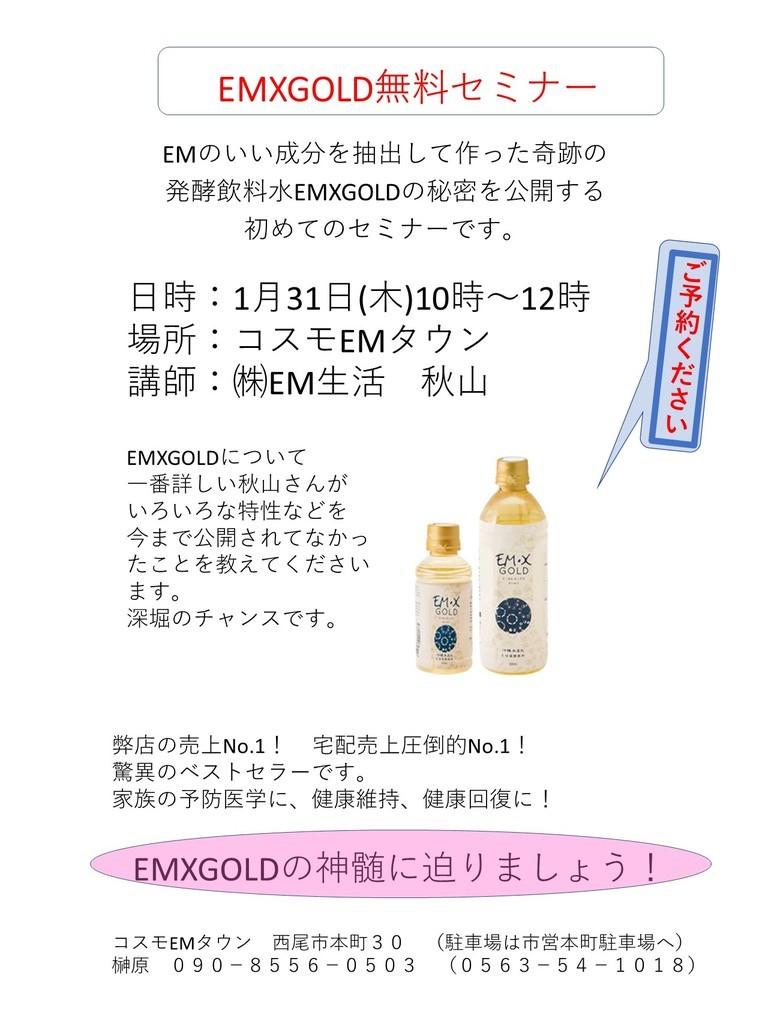 f:id:mikawawan:20190109190047j:plain