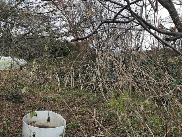 f:id:mikawawan:20200104140155j:plain