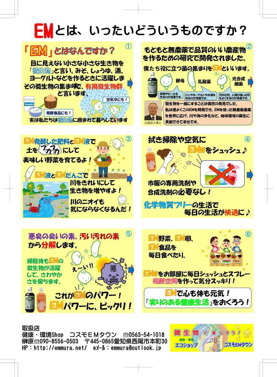 f:id:mikawawan:20200104221352j:plain