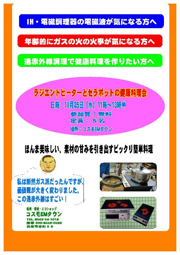 f:id:mikawawan:20201122232551j:plain