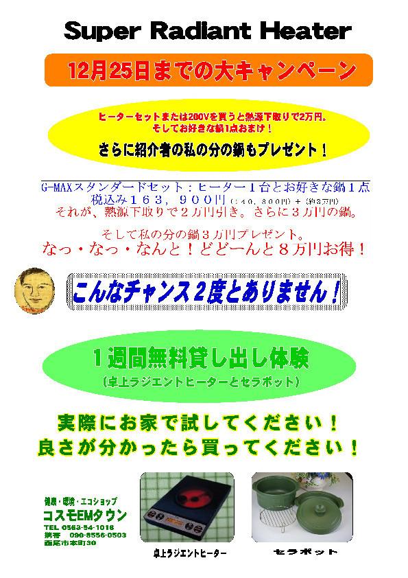 f:id:mikawawan:20201219232251j:plain