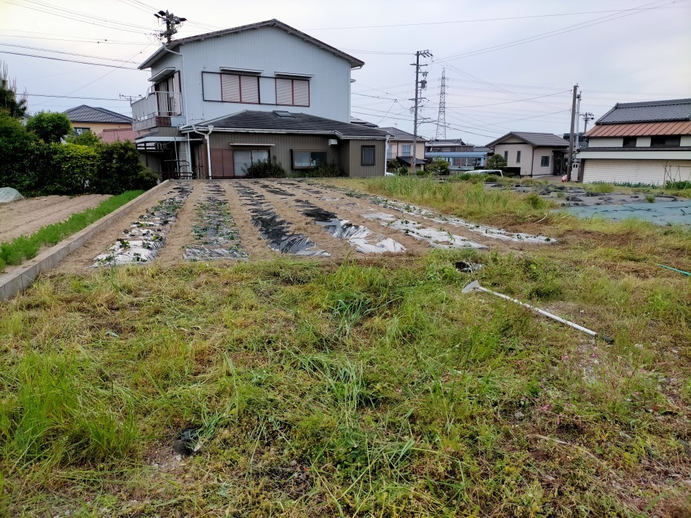 f:id:mikawawan:20210507210158j:plain