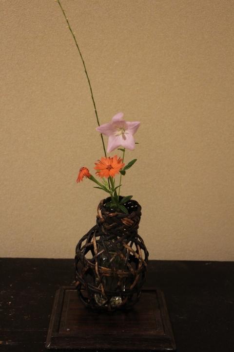茶花、古い小さな籠網に桔梗とセンノウゲ