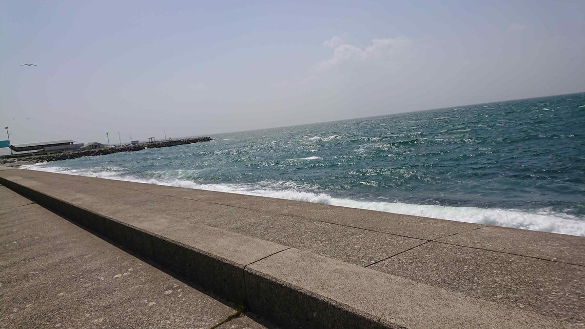 あいの風サイクルトレイン 海岸沿い