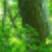 f:id:mikemoke:20150628160833p:plain