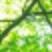 f:id:mikemoke:20150628163722p:plain