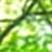 f:id:mikemoke:20150628163813p:plain