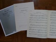 f:id:miketta-violinista:20201117151502j:plain