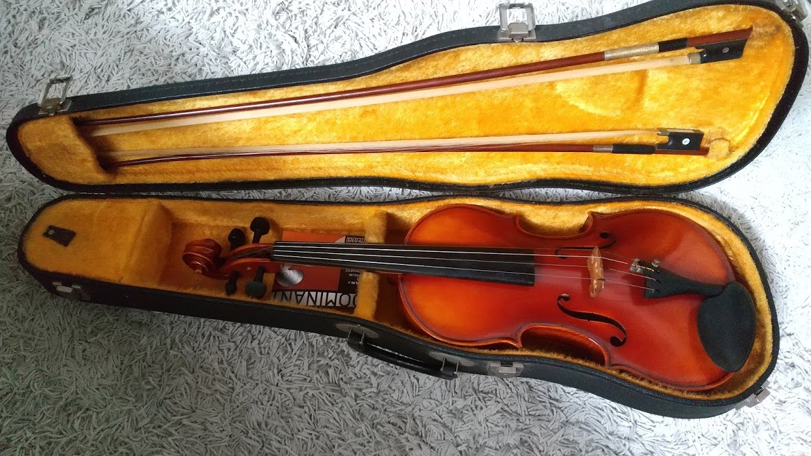 f:id:miketta-violinista:20210613112531j:plain