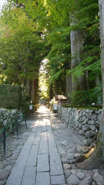 本堂へ続く石畳の道。脇には木々が茂っている。