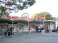 [神戸]王子動物園
