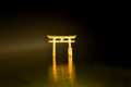 『京都新聞写真コンテスト 静寂』