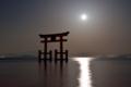 『京都新聞写真コンテスト 月光』