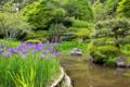 『京都新聞写真コンテスト 新緑の庭園』