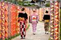 『京都新聞写真コンテスト 友禅回廊』