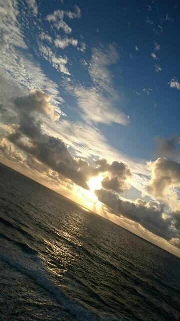f:id:mikiharikae:20161128153731j:image